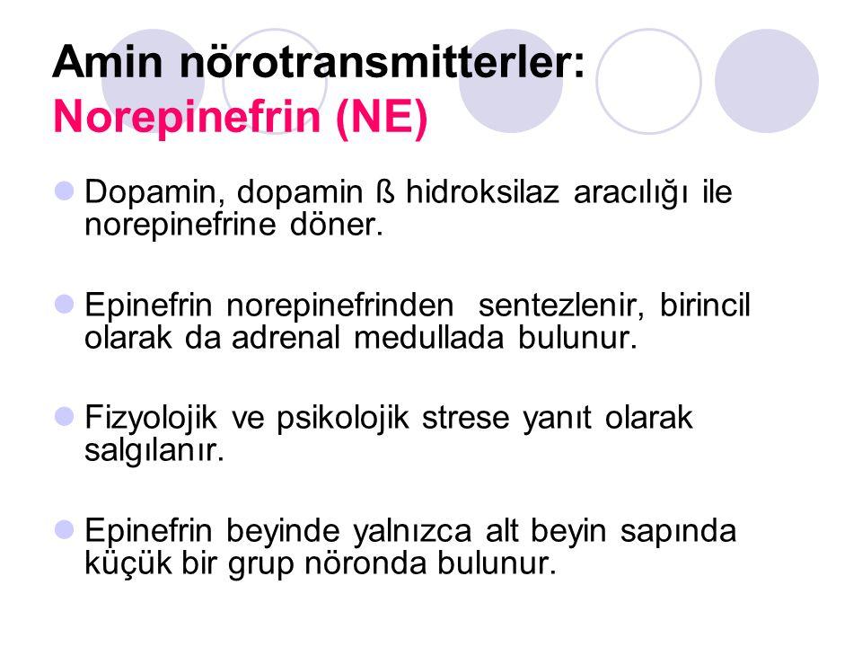 Amin nörotransmitterler: Norepinefrin (NE) Dopamin, dopamin ß hidroksilaz aracılığı ile norepinefrine döner. Epinefrin norepinefrinden sentezlenir, bi