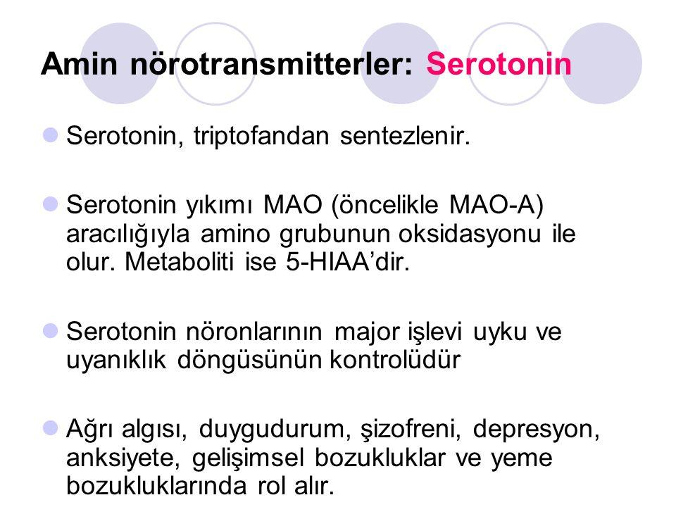 Amin nörotransmitterler: Serotonin Serotonin, triptofandan sentezlenir. Serotonin yıkımı MAO (öncelikle MAO-A) aracılığıyla amino grubunun oksidasyonu