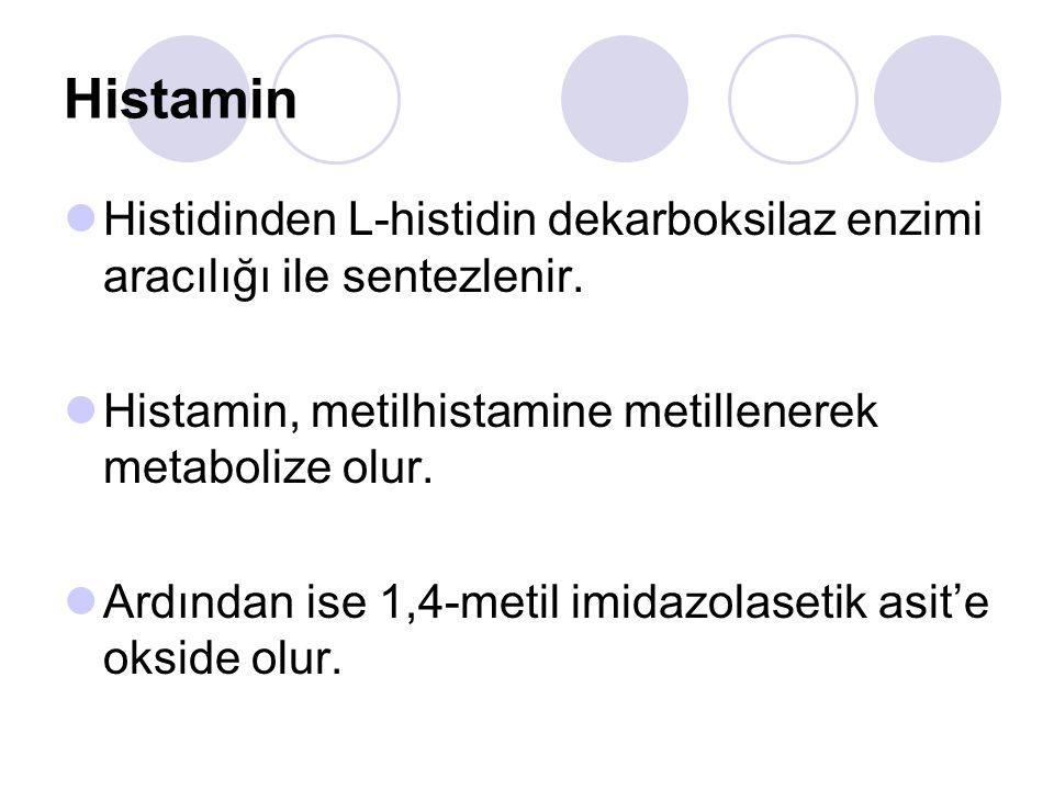 Histamin Histidinden L-histidin dekarboksilaz enzimi aracılığı ile sentezlenir. Histamin, metilhistamine metillenerek metabolize olur. Ardından ise 1,