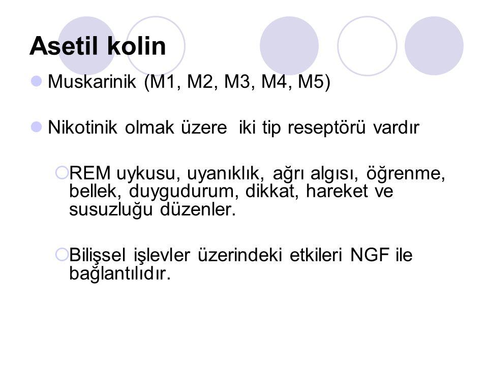 Asetil kolin Muskarinik (M1, M2, M3, M4, M5) Nikotinik olmak üzere iki tip reseptörü vardır  REM uykusu, uyanıklık, ağrı algısı, öğrenme, bellek, duy