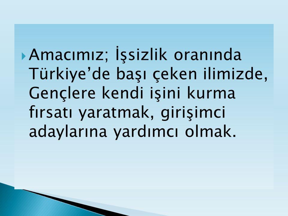  Amacımız; İşsizlik oranında Türkiye'de başı çeken ilimizde, Gençlere kendi işini kurma fırsatı yaratmak, girişimci adaylarına yardımcı olmak.