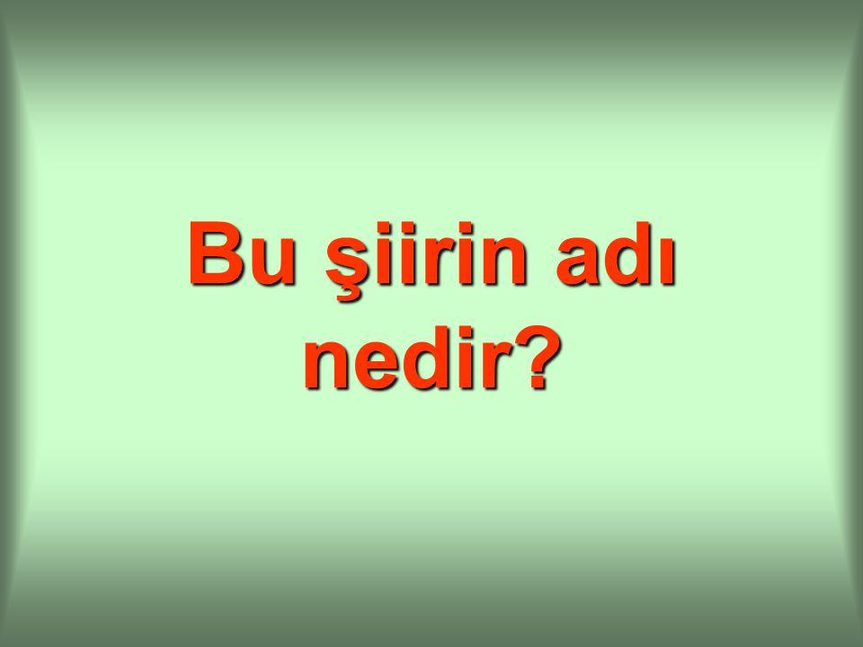 Bu şiirin şairi Erol Ünal Karabıyık'tır.