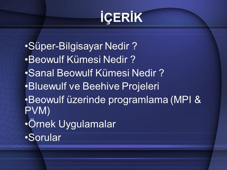 BEEHIVE PROJESİ // /home /opt/usr/opt/usr NFS (RO) MOUNT