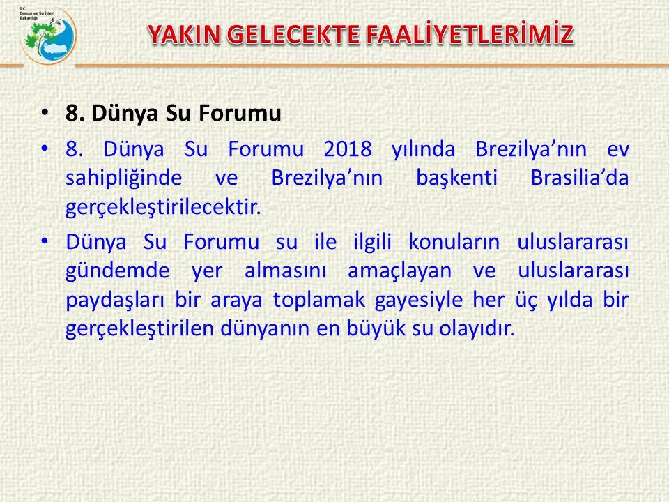 8. Dünya Su Forumu 8.