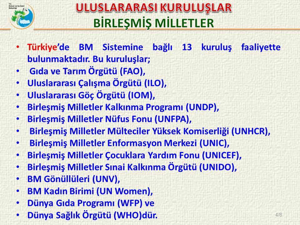 4/8 Türkiye'de BM Sistemine bağlı 13 kuruluş faaliyette bulunmaktadır. Bu kuruluşlar; Gıda ve Tarım Örgütü (FAO), Uluslararası Çalışma Örgütü (ILO), U