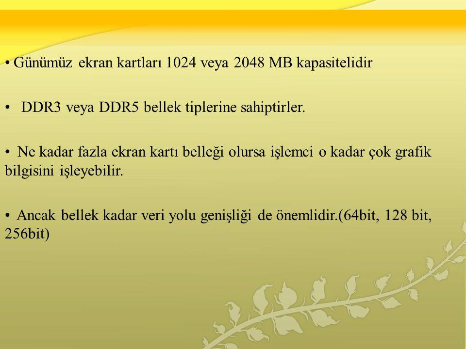 Günümüz ekran kartları 1024 veya 2048 MB kapasitelidir DDR3 veya DDR5 bellek tiplerine sahiptirler.