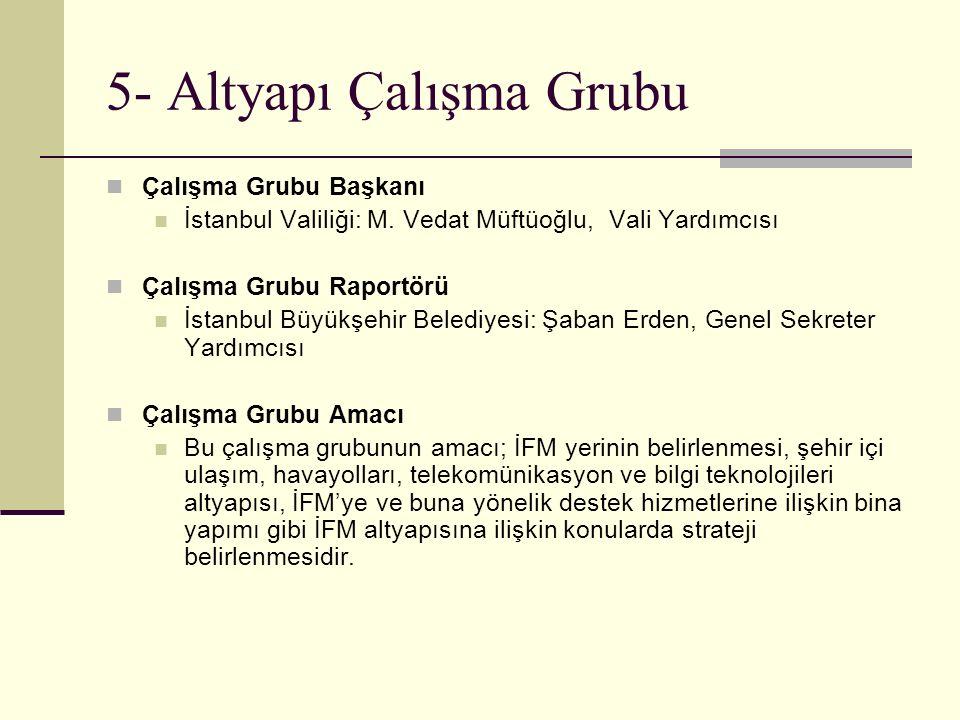 5- Altyapı Çalışma Grubu Çalışma Grubu Başkanı İstanbul Valiliği: M. Vedat Müftüoğlu, Vali Yardımcısı Çalışma Grubu Raportörü İstanbul Büyükşehir Bele