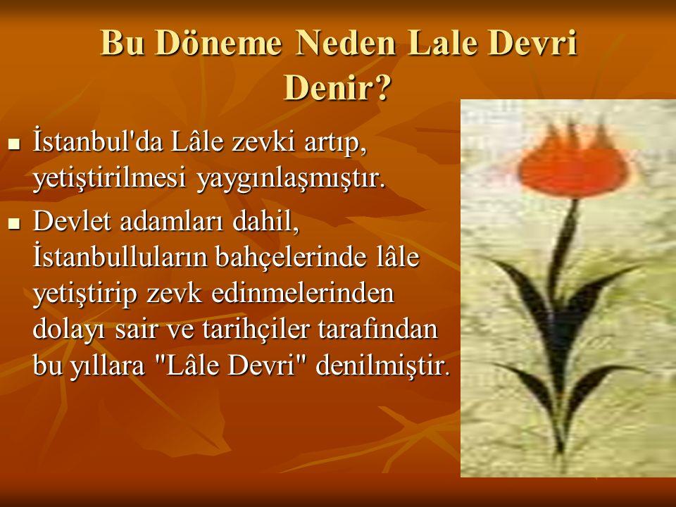 Bu Döneme Neden Lale Devri Denir? İstanbul'da Lâle zevki artıp, yetiştirilmesi yaygınlaşmıştır. İstanbul'da Lâle zevki artıp, yetiştirilmesi yaygınlaş