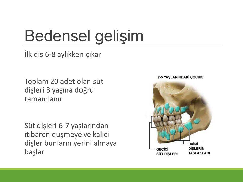 Bedensel gelişim İlk diş 6-8 aylıkken çıkar Toplam 20 adet olan süt dişleri 3 yaşına doğru tamamlanır Süt dişleri 6-7 yaşlarından itibaren düşmeye ve kalıcı dişler bunların yerini almaya başlar