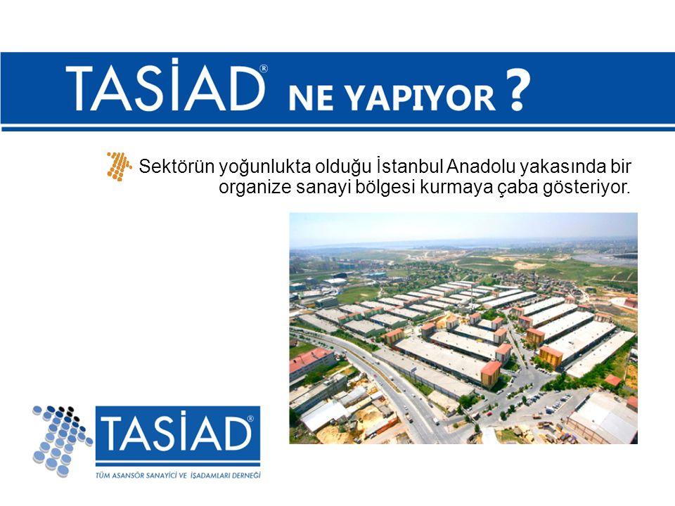 Sektörün yoğunlukta olduğu İstanbul Anadolu yakasında bir organize sanayi bölgesi kurmaya çaba gösteriyor.