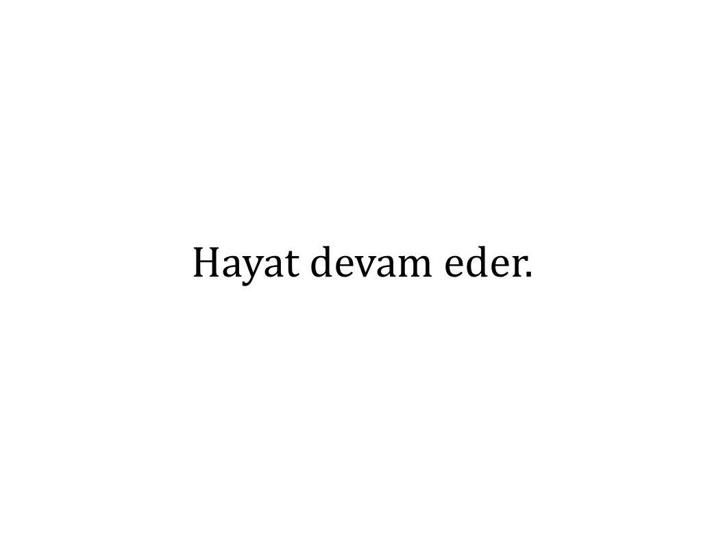 Hayat devam eder.
