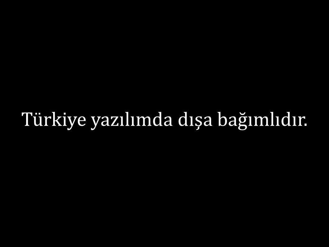 Türkiye yazılımda dışa bağımlıdır.
