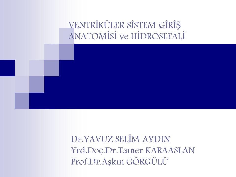 ENDOSKOPİK 3.