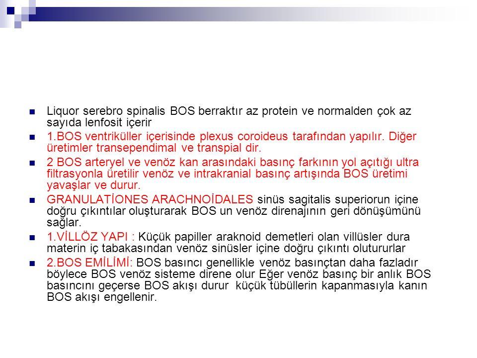 Liquor serebro spinalis BOS berraktır az protein ve normalden çok az sayıda lenfosit içerir 1.BOS ventriküller içerisinde plexus coroideus tarafından yapılır.