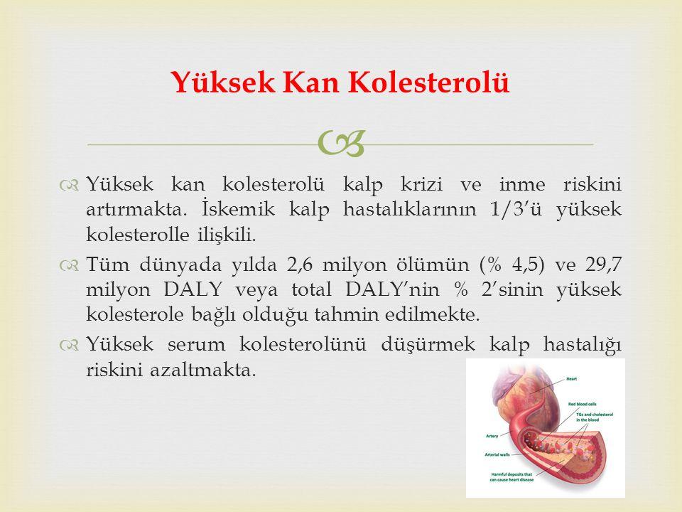   Yüksek kan kolesterolü kalp krizi ve inme riskini artırmakta.