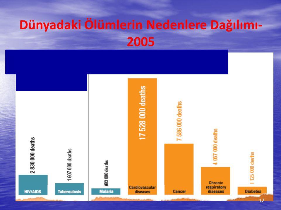 %13 Dünyadaki Ölümlerin Nedenlere Dağılımı- 2005 12