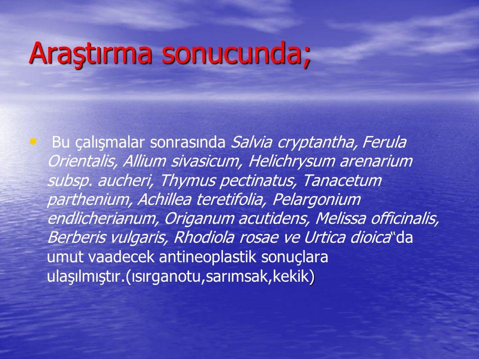 Araştırma sonucunda; ) Bu çalışmalar sonrasında Salvia cryptantha, Ferula Orientalis, Allium sivasicum, Helichrysum arenarium subsp.