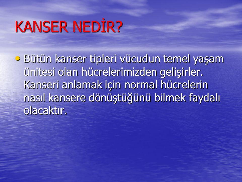 Erkeklerde Yerleşim Yerlerine Göre En Sık Görülen Kanserler, (Türkiye de)