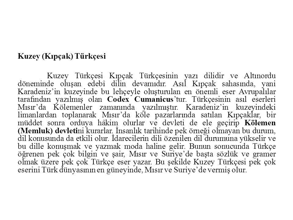 Kuzey (Kıpçak) Türkçesi Kuzey Türkçesi Kıpçak Türkçesinin yazı dilidir ve Altınordu döneminde oluşan edebî dilin devamıdır. Asıl Kıpçak sahasında, yan