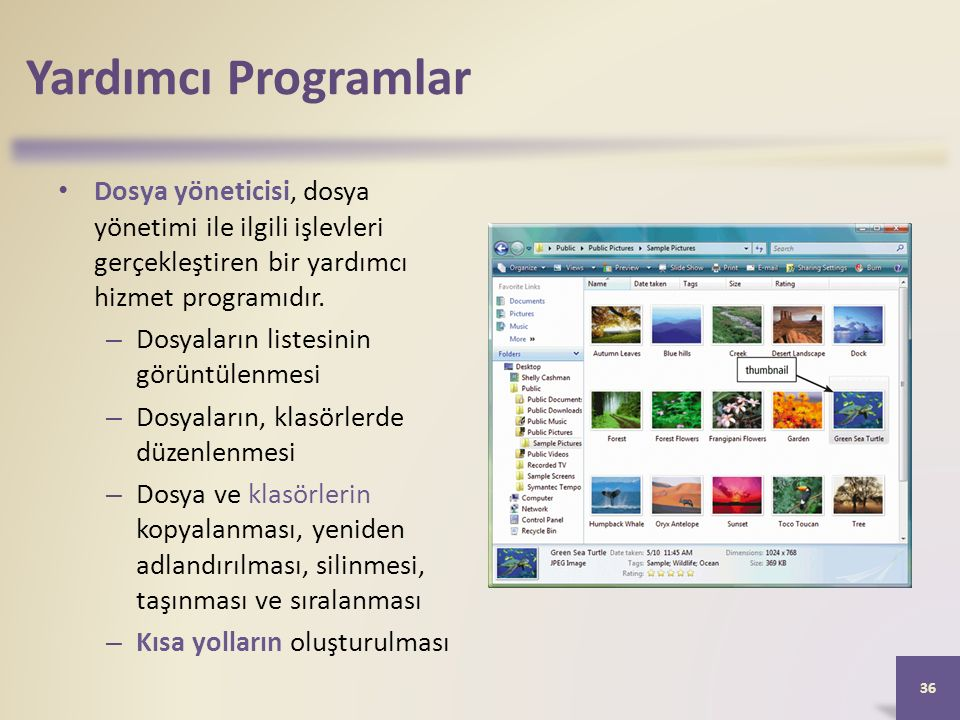 Yardımcı Programlar Dosya yöneticisi, dosya yönetimi ile ilgili işlevleri gerçekleştiren bir yardımcı hizmet programıdır.