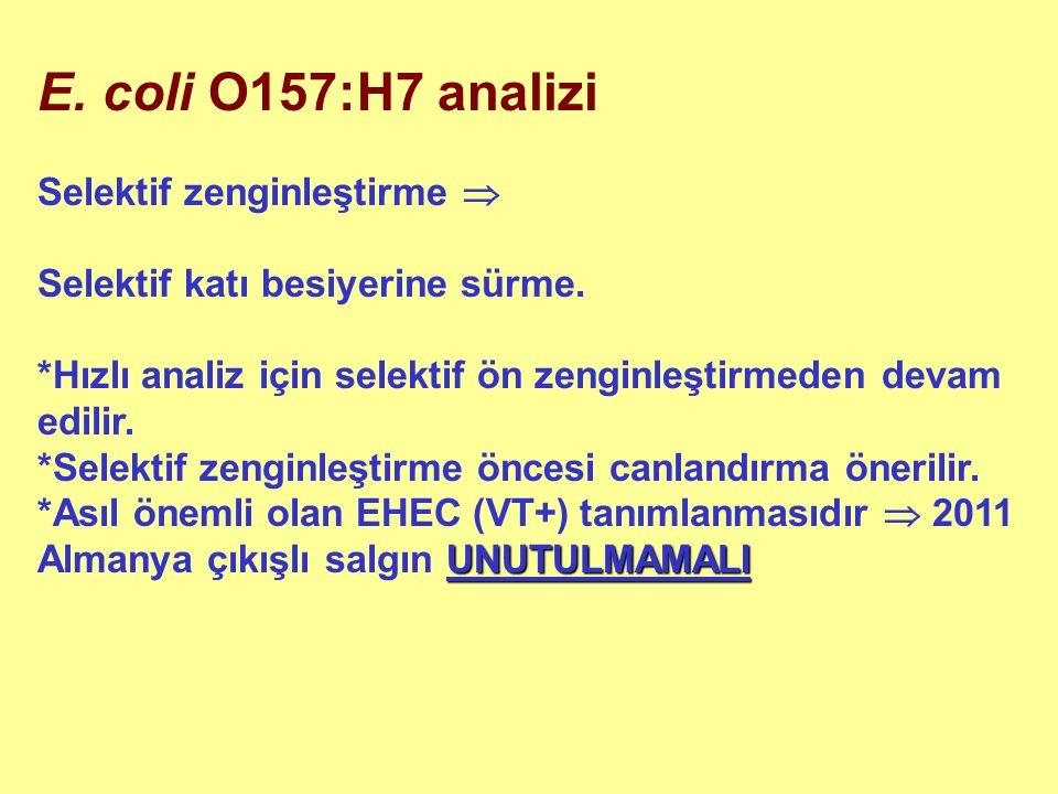 E. coli O157:H7 analizi Selektif zenginleştirme  Selektif katı besiyerine sürme.