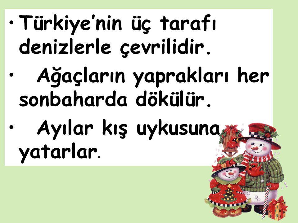 Türkiye'nin üç tarafı denizlerle çevrilidir. Ağaçların yaprakları her sonbaharda dökülür.