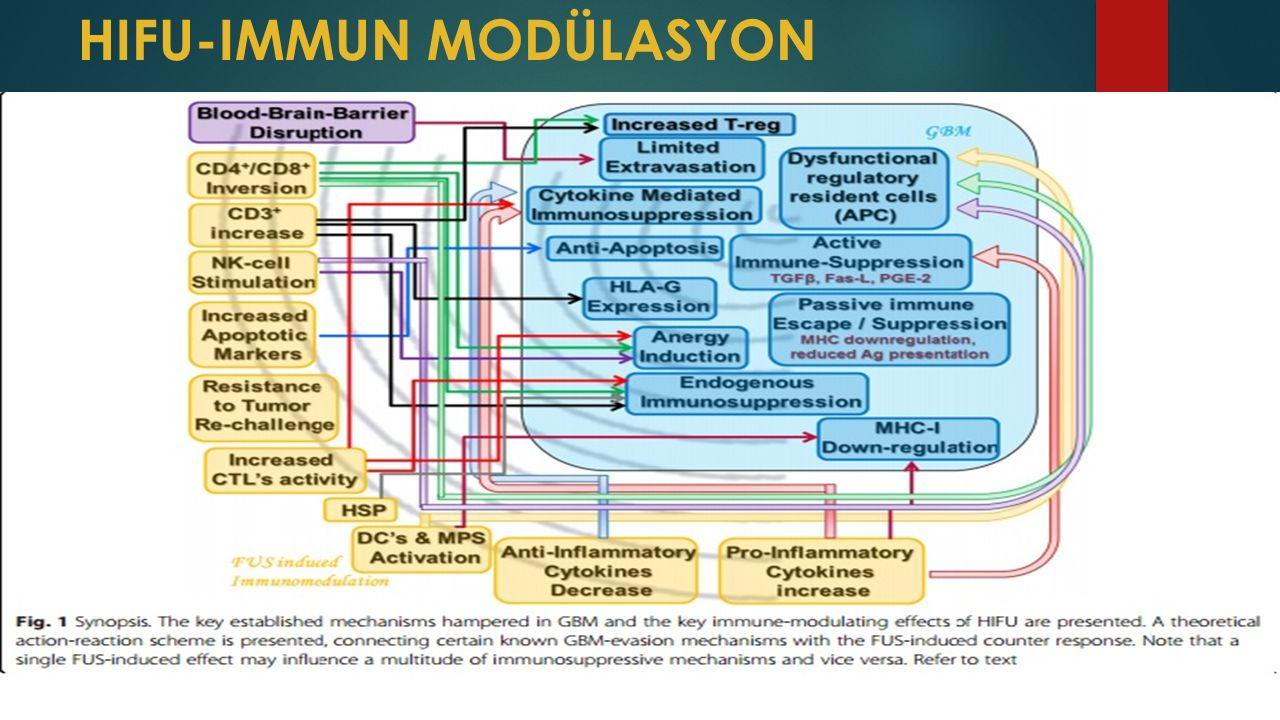 HIFU-IMMUN MODÜLASYON