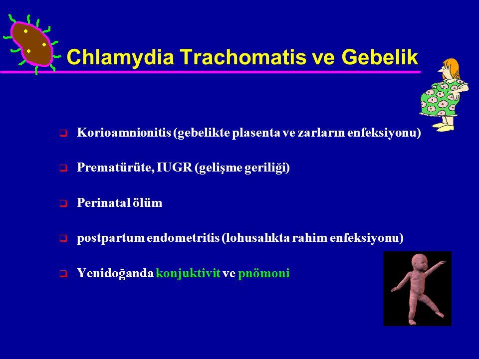 Chlamydia Trachomatis ve Gebelik  Korioamnionitis (gebelikte plasenta ve zarların enfeksiyonu)  Prematürüte, IUGR (gelişme geriliği)  Perinatal ölü