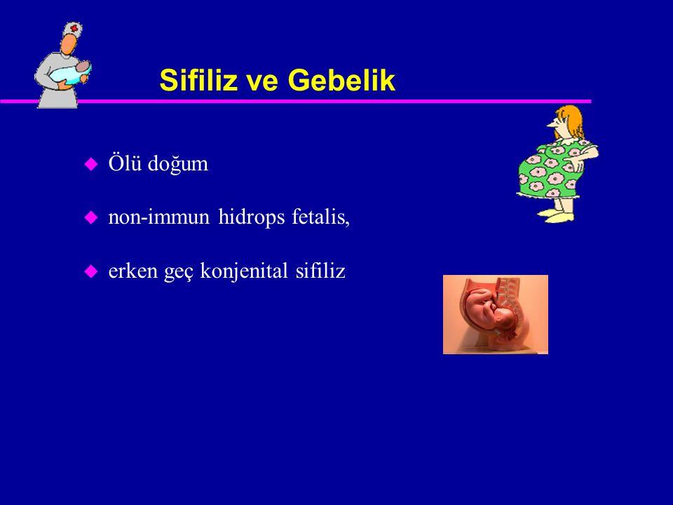 Sifiliz ve Gebelik u Ölü doğum u non-immun hidrops fetalis, u erken geç konjenital sifiliz