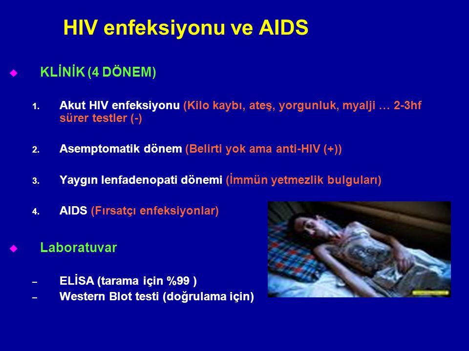 u KLİNİK (4 DÖNEM) 1. Akut HIV enfeksiyonu (Kilo kaybı, ateş, yorgunluk, myalji … 2-3hf sürer testler (-) 2. Asemptomatik dönem (Belirti yok ama anti-