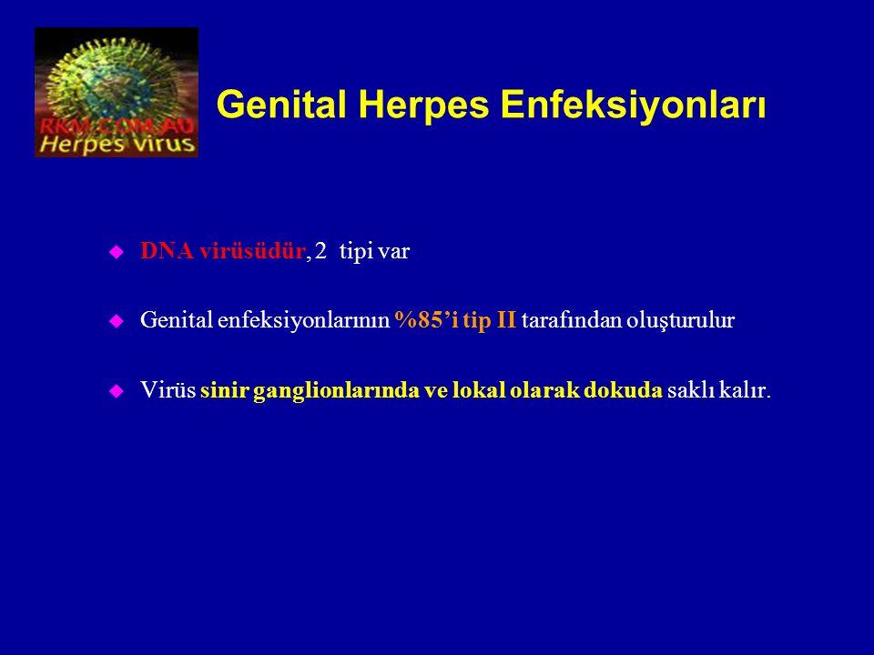 Genital Herpes Enfeksiyonları u DNA virüsüdür, 2 tipi var u Genital enfeksiyonlarının %85'i tip II tarafından oluşturulur u Virüs sinir ganglionlarınd