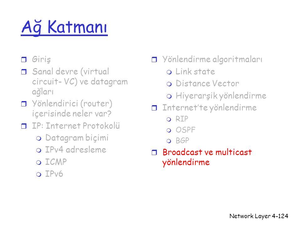 Network Layer4-124 Ağ Katmanı r Giriş r Sanal devre (virtual circuit- VC) ve datagram ağları r Yönlendirici (router) içerisinde neler var? r IP: Inter