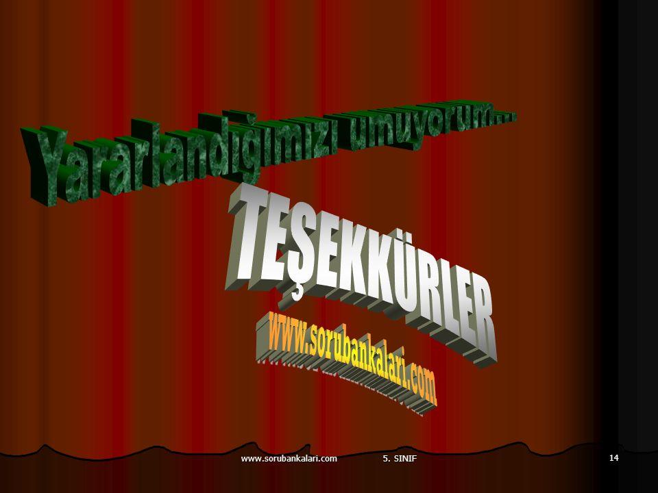 www.sorubankalari.com 5. SINIF 14