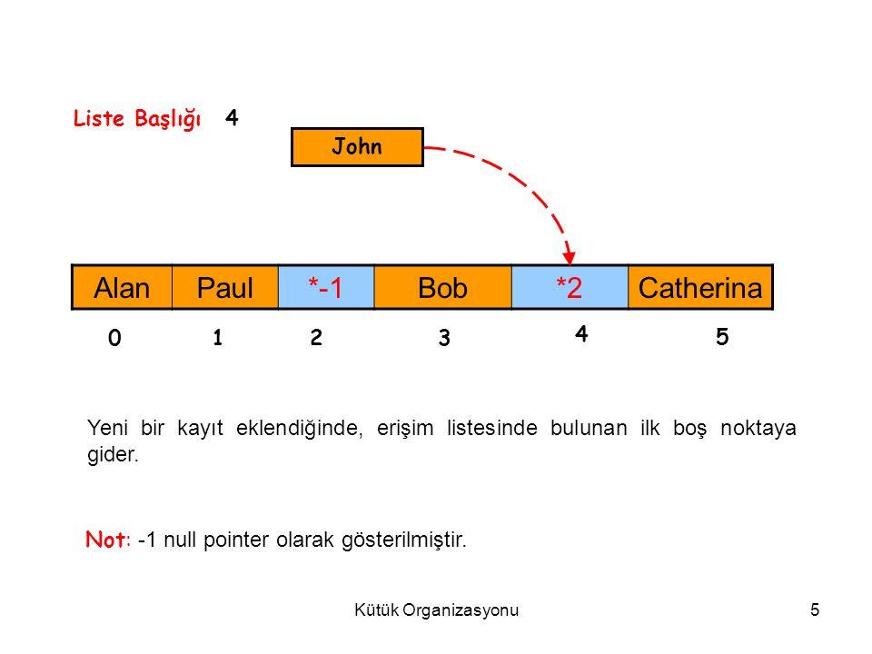 Kütük Organizasyonu6 3.