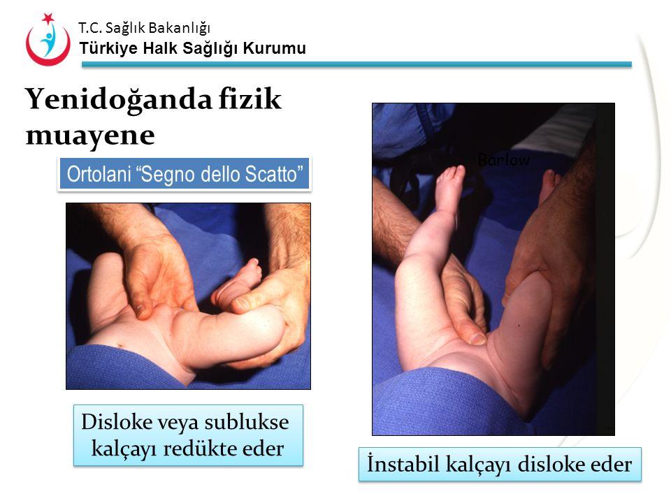 T.C. Sağlık Bakanlığı Türkiye Halk Sağlığı Kurumu Pili asimetrisi