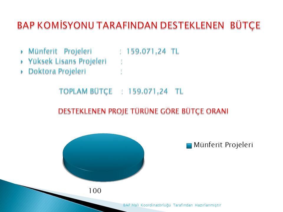  Münferit Projeleri : 159.071,24 TL  Yüksek Lisans Projeleri :  Doktora Projeleri : TOPLAM BÜTÇE : 159.071,24 TL TOPLAM BÜTÇE : 159.071,24 TL DESTEKLENEN PROJE TÜRÜNE GÖRE BÜTÇE ORANI BAP Mali Koordinatörlüğü Tarafından Hazırlanmıştır