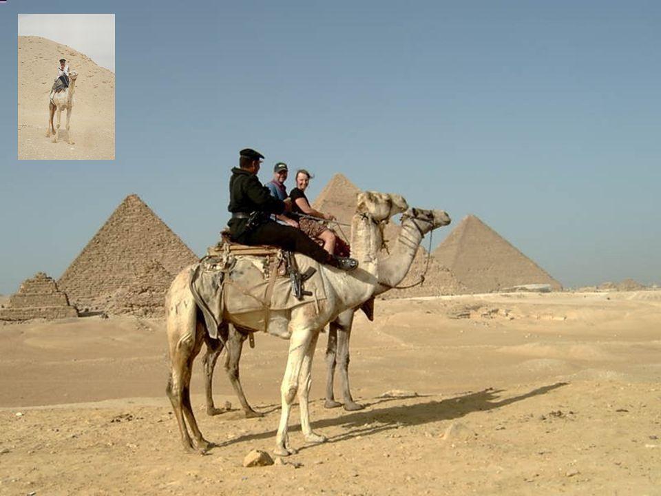 Piramitler, firavunun mumyası ile hepsi birbirinden değerli eşsiz nitelikteki sanat eserlerini; kral, kraliçe, prens heykellerini de içlerinde saklıyo