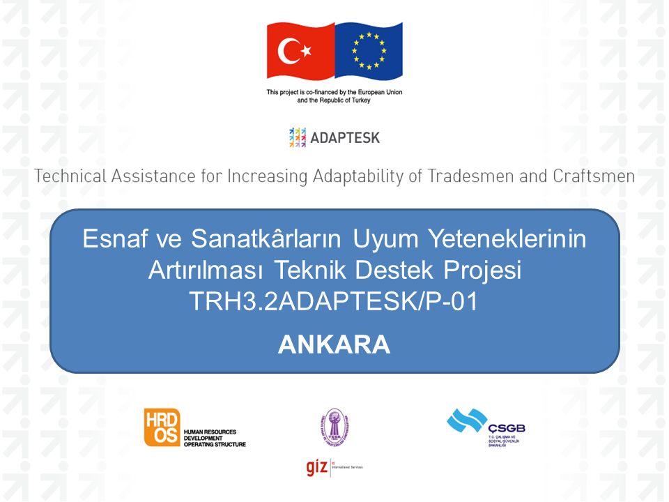 Esnaf ve Sanatkârların Uyum Yeteneklerinin Artırılması Teknik Destek Projesi TRH3.2ADAPTESK/P-01 ANKARA