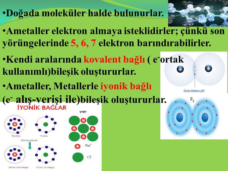 Doğada moleküler halde bulunurlar. Ametaller elektron almaya isteklidirler; çünkü son yörüngelerinde 5, 6, 7 elektron barındırabilirler. Kendi araları