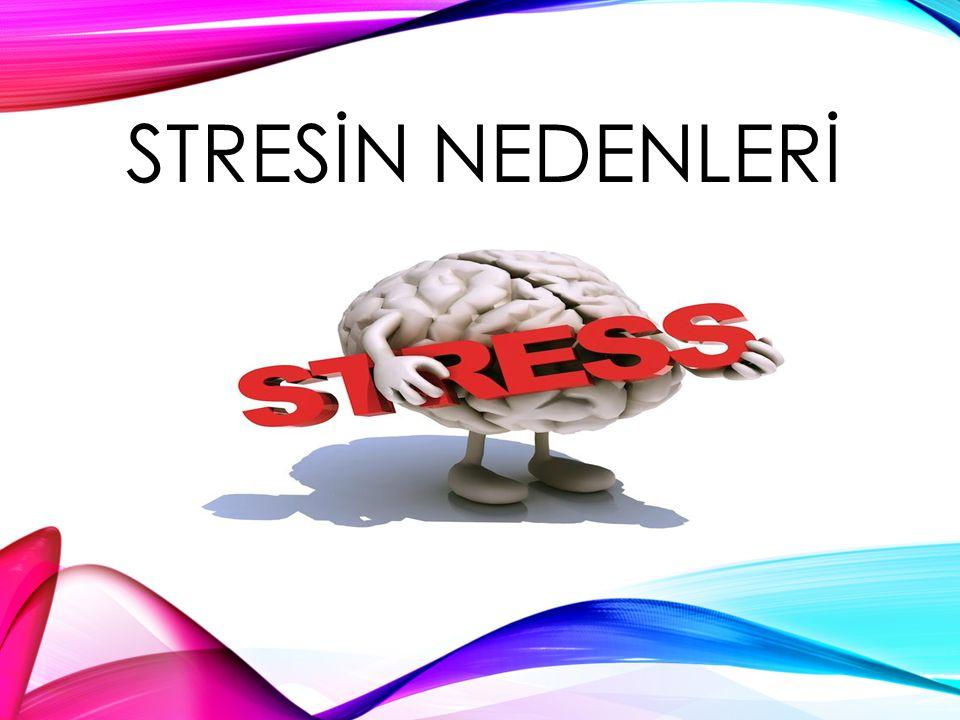 STRESİN NEDENLERİ