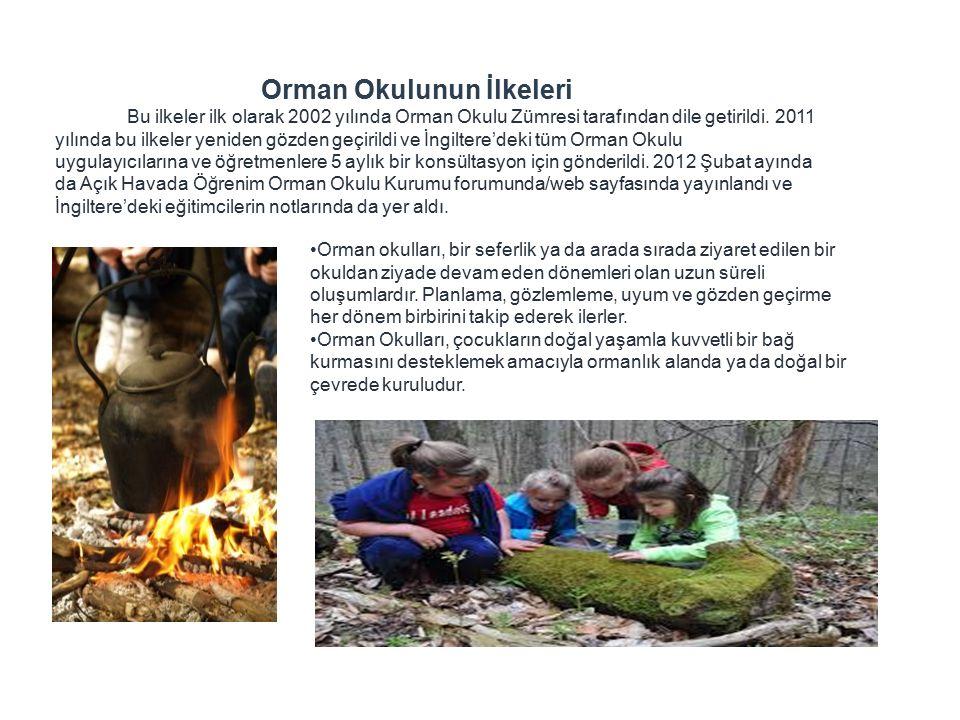 Orman Okulunun İlkeleri Bu ilkeler ilk olarak 2002 yılında Orman Okulu Zümresi tarafından dile getirildi.