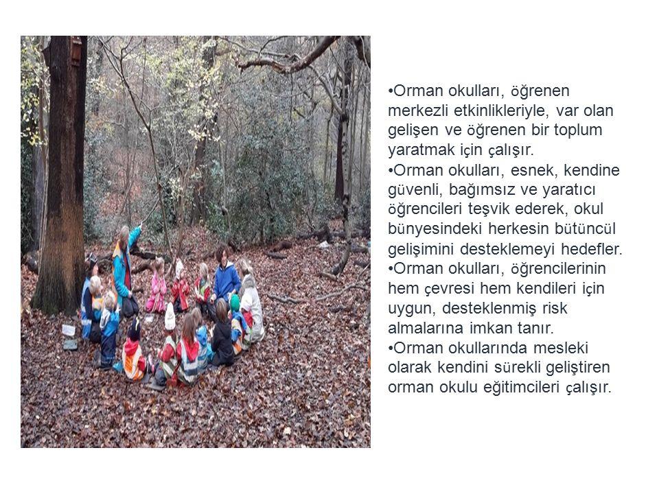 Orman okulları, ö ğrenen merkezli etkinlikleriyle, var olan gelişen ve ö ğrenen bir toplum yaratmak i ç in ç alışır.