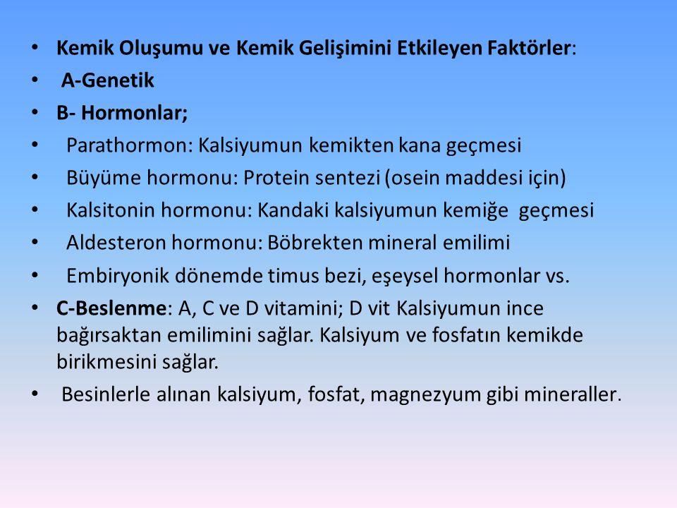 Kemik Oluşumu ve Kemik Gelişimini Etkileyen Faktörler: A-Genetik B- Hormonlar; Parathormon: Kalsiyumun kemikten kana geçmesi Büyüme hormonu: Protein sentezi (osein maddesi için) Kalsitonin hormonu: Kandaki kalsiyumun kemiğe geçmesi Aldesteron hormonu: Böbrekten mineral emilimi Embiryonik dönemde timus bezi, eşeysel hormonlar vs.
