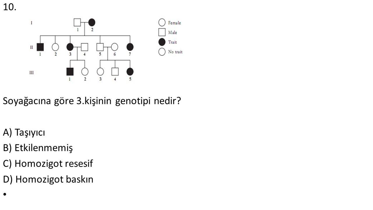 10. Soyağacına göre 3.kişinin genotipi nedir? A) Taşıyıcı B) Etkilenmemiş C) Homozigot resesif D) Homozigot baskın