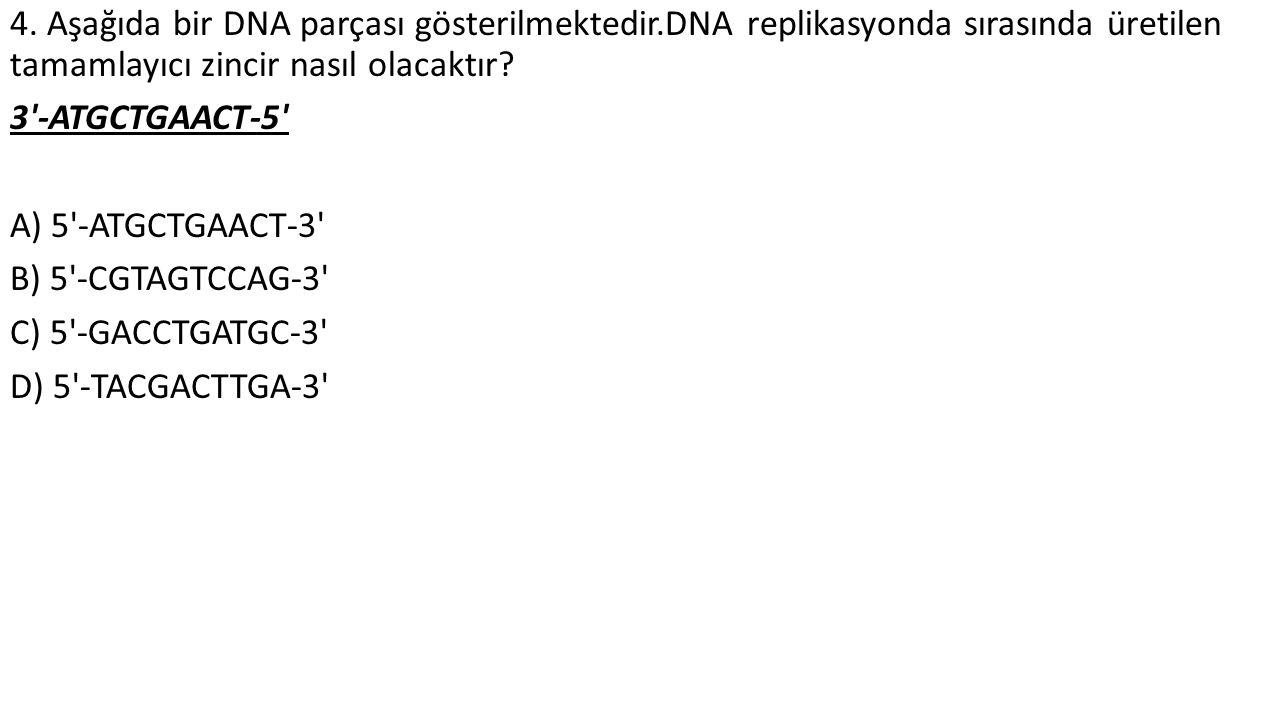 4. Aşağıda bir DNA parçası gösterilmektedir.DNA replikasyonda sırasında üretilen tamamlayıcı zincir nasıl olacaktır? 3'-ATGCTGAACT-5' A) 5'-ATGCTGAACT