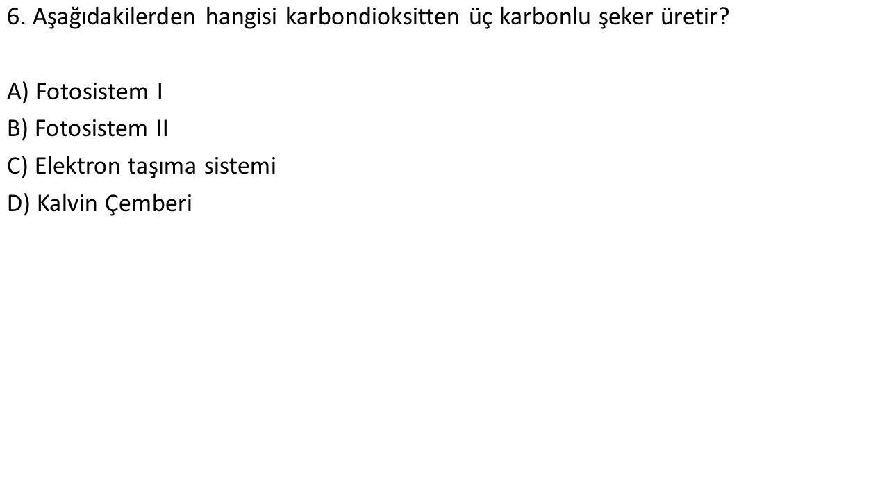 6. Aşağıdakilerden hangisi karbondioksitten üç karbonlu şeker üretir? A) Fotosistem I B) Fotosistem II C) Elektron taşıma sistemi D) Kalvin Çemberi