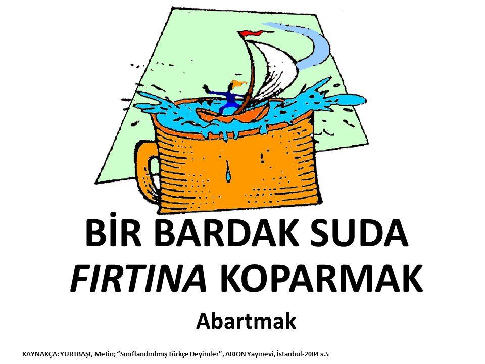 ACEMİ ÇAYLAK Acemi KAYNAKÇA: YURTBAŞI, Metin; Sınıflandırılmış Türkçe Deyimler , ARION Yayınevi, İstanbul-2004 s.5