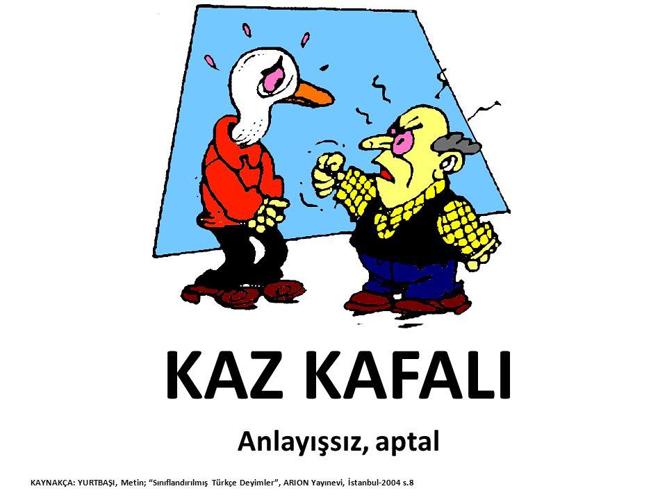 """KAZ KAFALI Anlayışsız, aptal KAYNAKÇA: YURTBAŞI, Metin; """"Sınıflandırılmış Türkçe Deyimler"""", ARION Yayınevi, İstanbul-2004 s.8"""