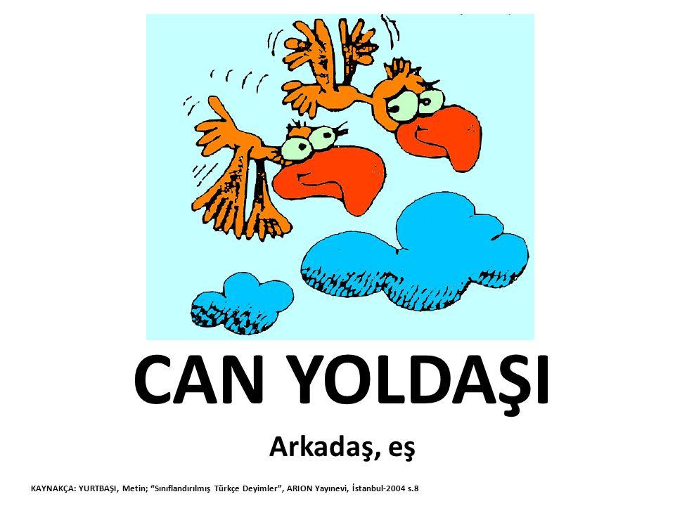 """CAN YOLDAŞI Arkadaş, eş KAYNAKÇA: YURTBAŞI, Metin; """"Sınıflandırılmış Türkçe Deyimler"""", ARION Yayınevi, İstanbul-2004 s.8"""
