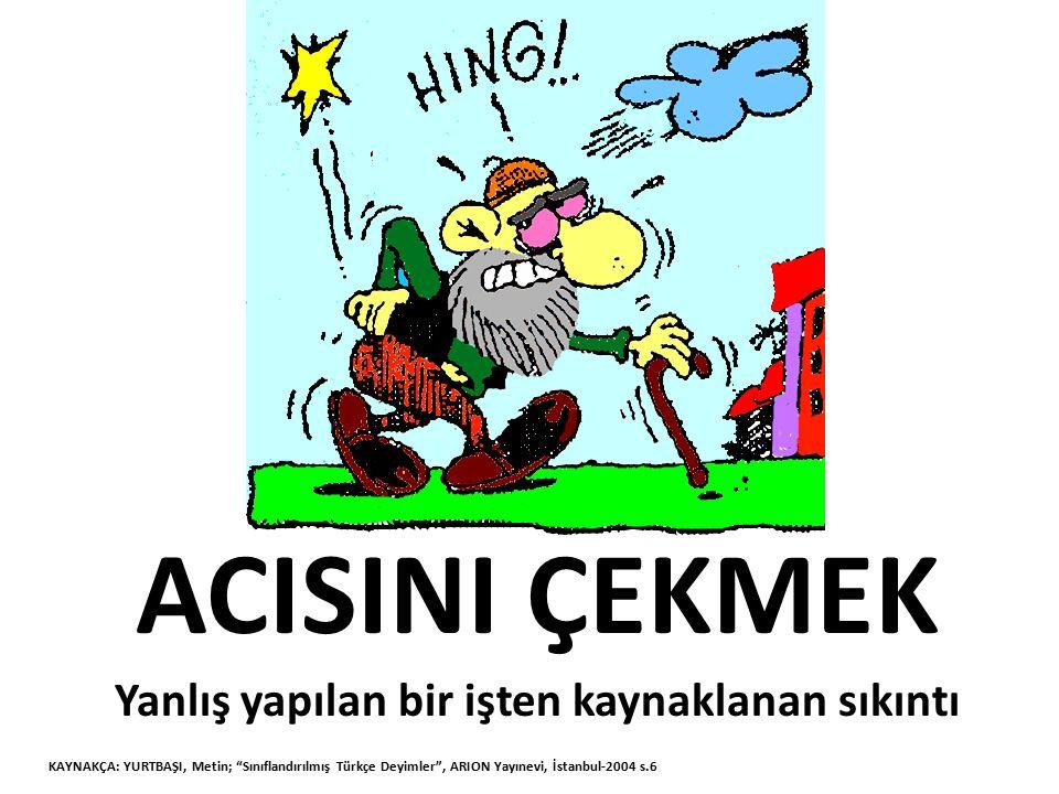 """ACISINI ÇEKMEK Yanlış yapılan bir işten kaynaklanan sıkıntı KAYNAKÇA: YURTBAŞI, Metin; """"Sınıflandırılmış Türkçe Deyimler"""", ARION Yayınevi, İstanbul-20"""